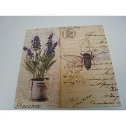 Obraz lawenda owad